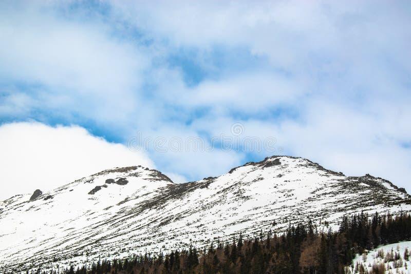 高Tatras,斯洛伐克的斯诺伊倾斜 免版税库存照片