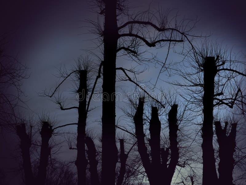 鬼的光秃的树 图库摄影