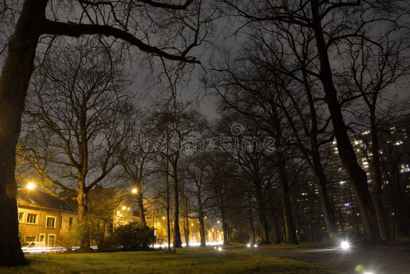 鬼的公园在多雨晚上 免版税图库摄影