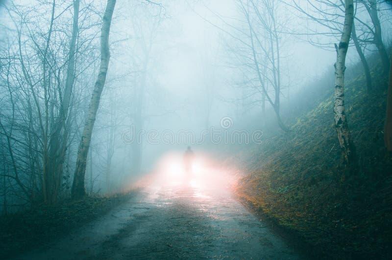 鬼的有雾的路通过有人的森林地现出轮廓反对汽车车灯 库存照片