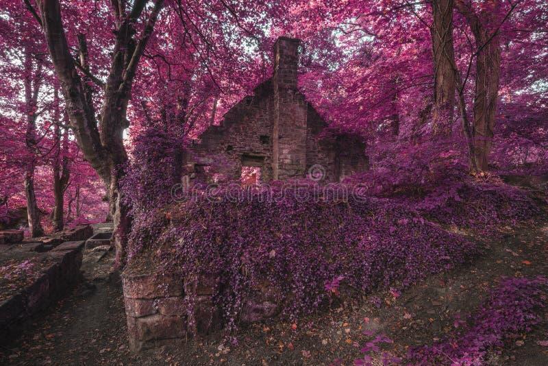 鬼的老被破坏的遗弃大厦在厚实的超现实的森林土地 库存照片