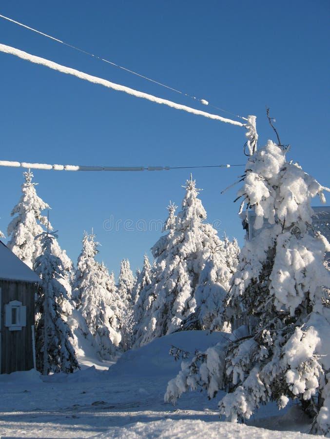 魁北克场面雪 库存图片