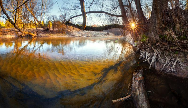 魔术横向 有清楚的水和沙子的美丽的河在春天森林里 库存图片