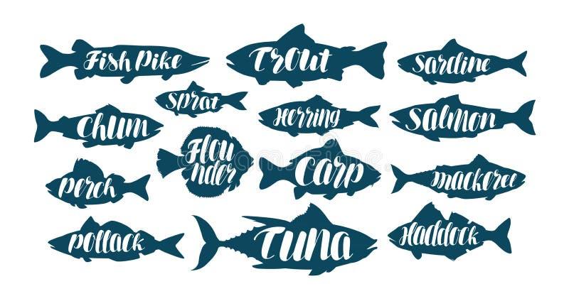 鱼、汇集标签或者商标 海鲜,食物,渔,渔的集合象 手写的字法,书法传染媒介 向量例证