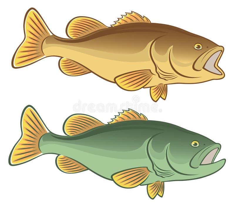 鱼低音 向量例证