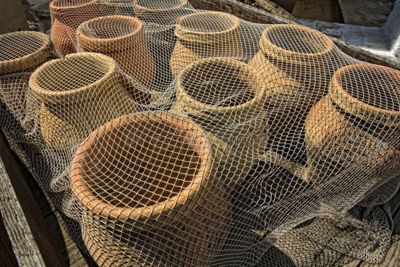 鱼刺激中世纪 免版税图库摄影