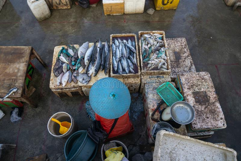 鱼卖主在jimbaran巴厘岛鱼市上 他卖被抓了鲜鱼的各种各样的类型 免版税库存图片