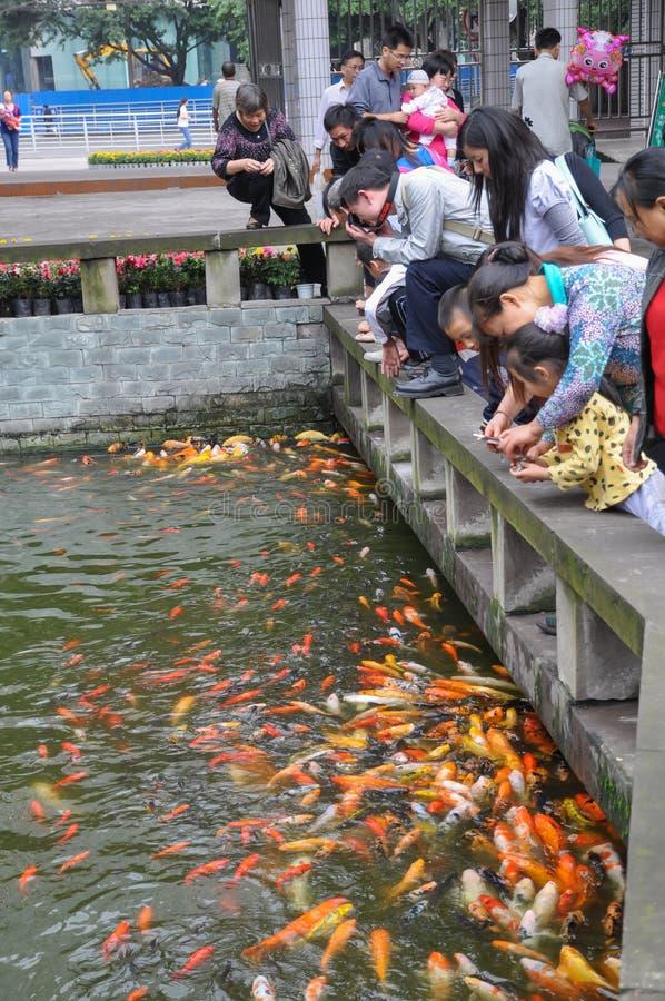 鱼和人们在公园 库存图片