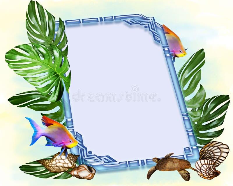 鱼和壳在相框的设计 库存例证