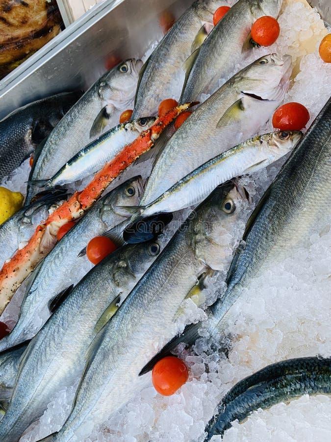 鱼和蟹腿垂直的射击用蕃茄和柠檬在冰 免版税库存照片