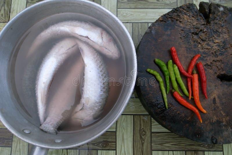 鱼和辣椒为晚餐做准备 库存照片