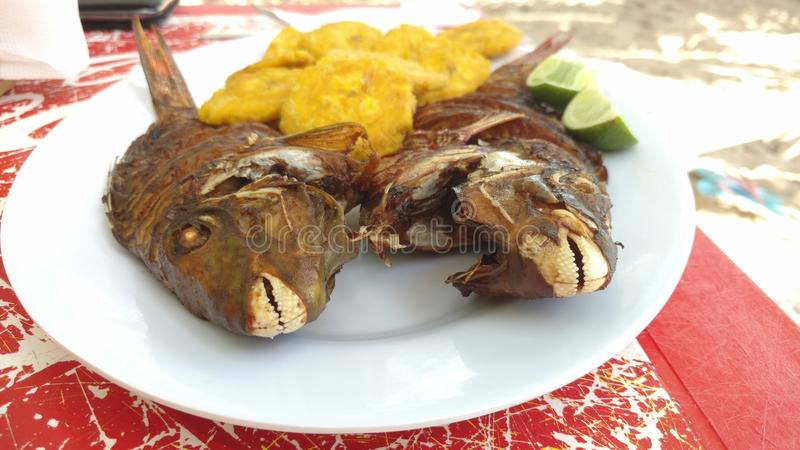 鱼和Tostones 库存照片