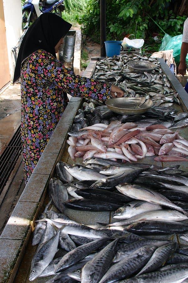 鱼女孩马来出售 免版税库存图片