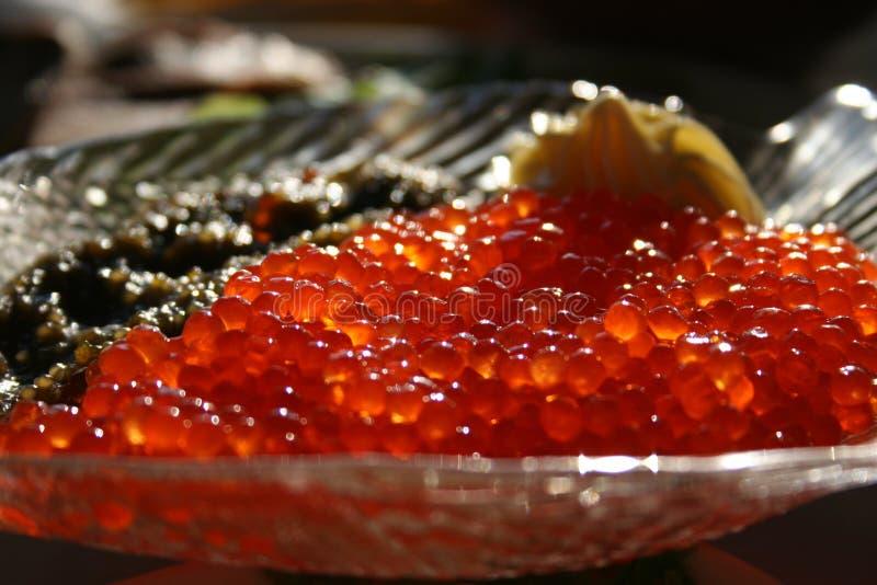 鱼子酱 库存照片