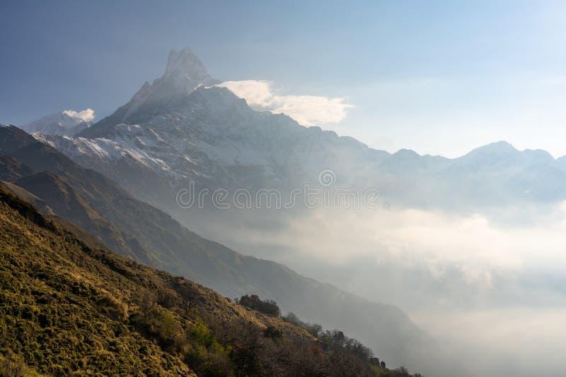 鱼尾峰在早晨日出的山峰,Mardi Himal艰苦跋涉,博克拉,尼泊尔 库存图片