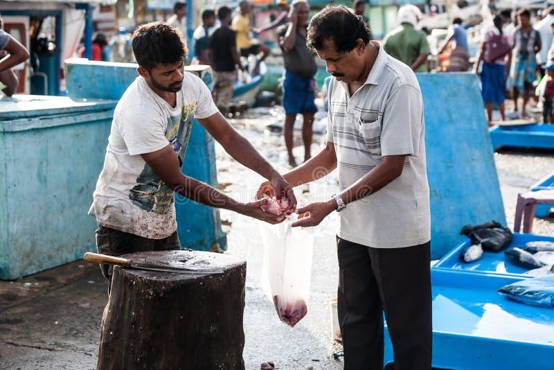 鱼市在斯里兰卡 免版税库存图片