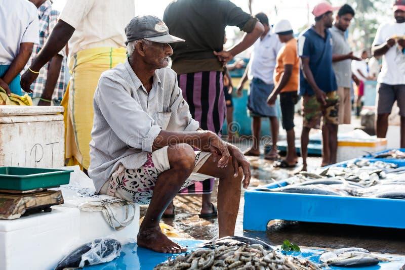 鱼市在斯里兰卡 图库摄影
