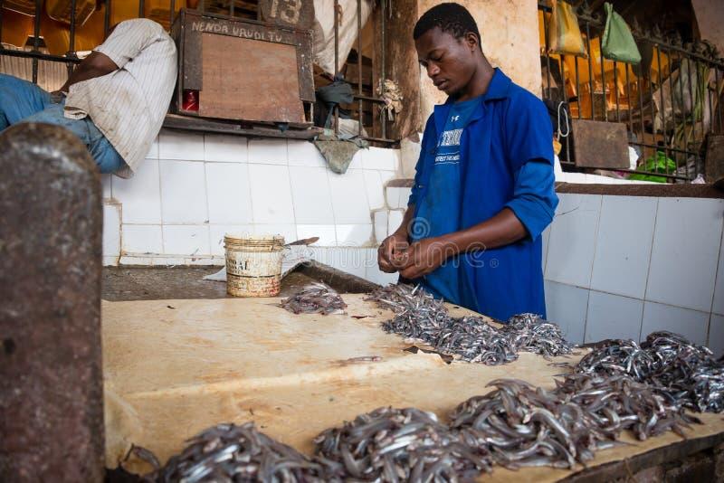 鱼市在桑给巴尔石头城,桑给巴尔 免版税库存照片