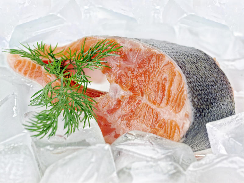 鱼排 库存照片