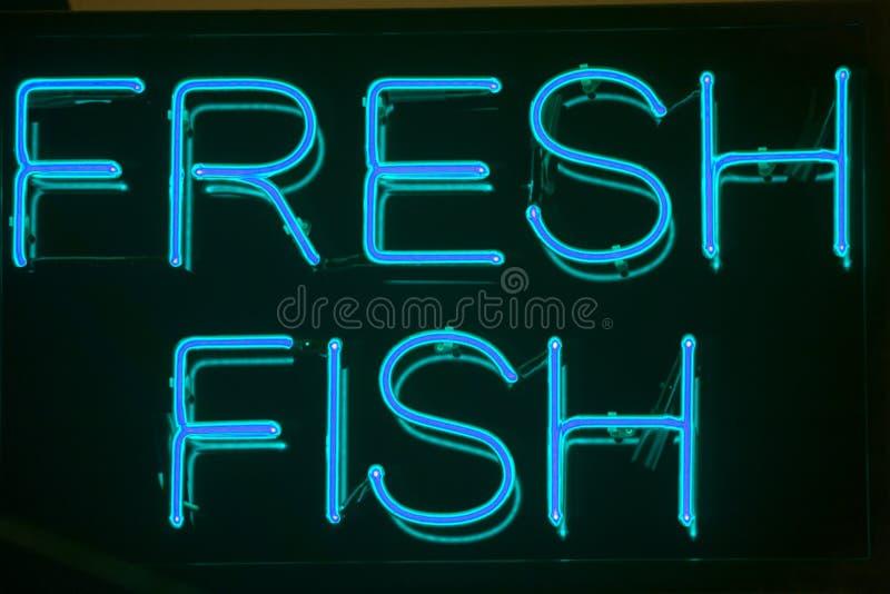 鱼新霓虹灯广告 库存照片