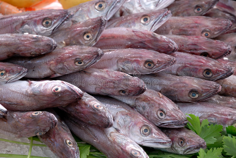 鱼新鲜市场 图库摄影