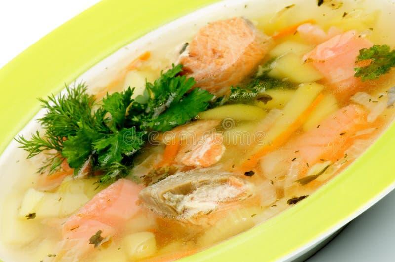 鱼汤 库存照片