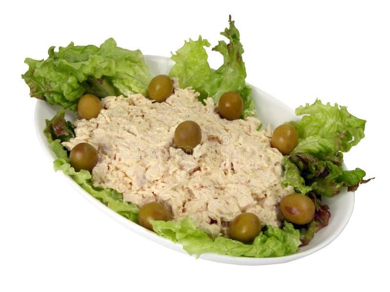 鱼沙拉 免版税库存图片