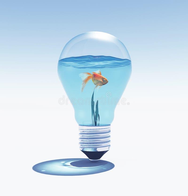 鱼游泳侧视图反对亮光电灯泡的 皇族释放例证