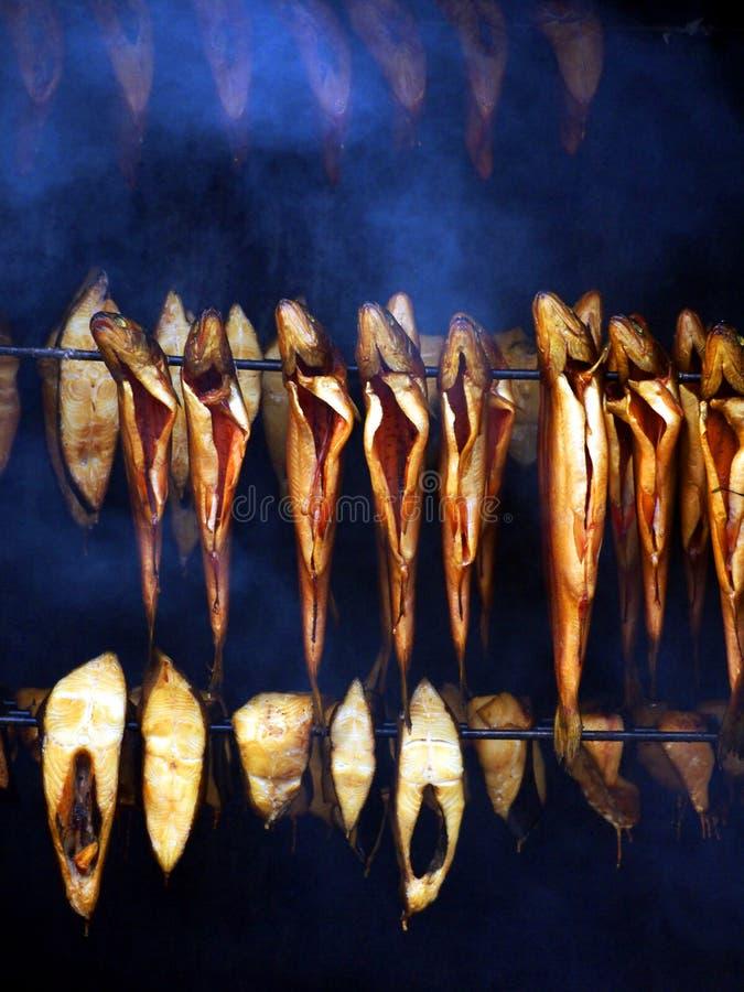 鱼烤箱 免版税库存照片