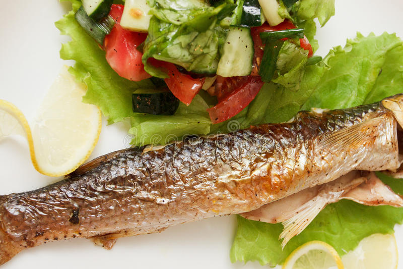 Download 鱼烤蔬菜 库存图片. 图片 包括有 健康, 食物, 部分, 没人, 片式, 正餐, 香料, 用餐, 沙拉 - 59102043