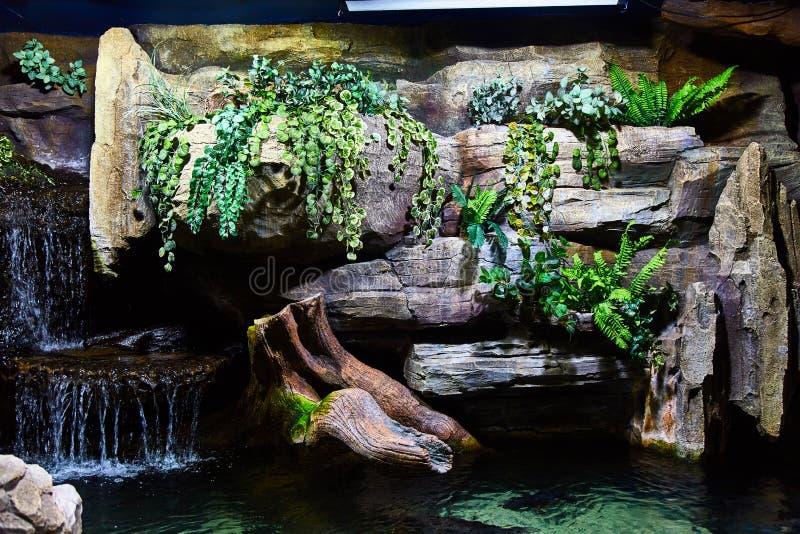 鱼的玻璃容器在吉隆坡水族馆 免版税库存照片
