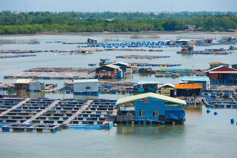 鱼繁殖的农场在越南 图库摄影
