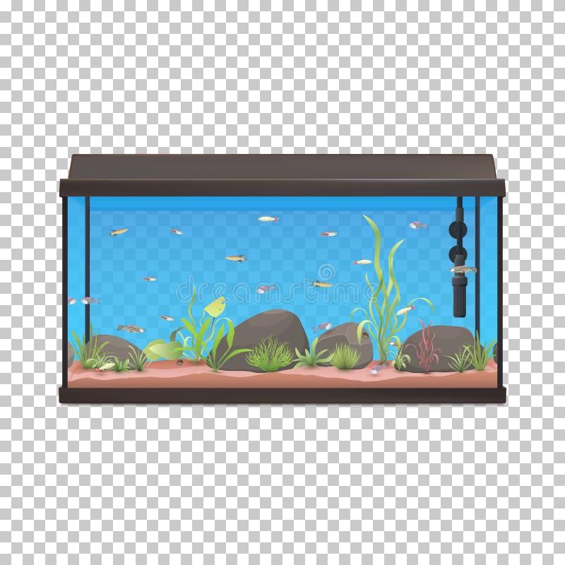 鱼缸 与鱼石头和植物的水族馆例证 库存例证