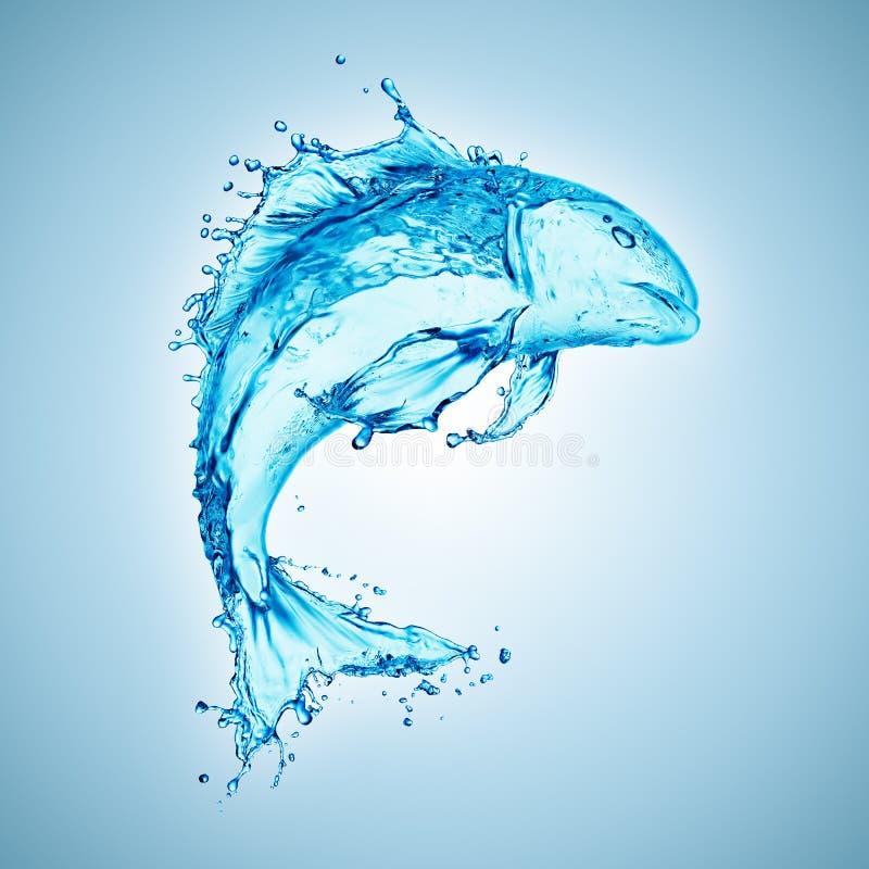 鱼被塑造的水飞溅 免版税库存照片