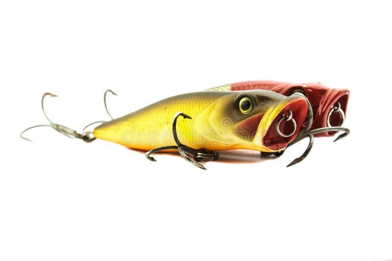 鱼诱饵 库存照片