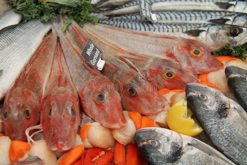 鱼贩子显示 免版税库存照片