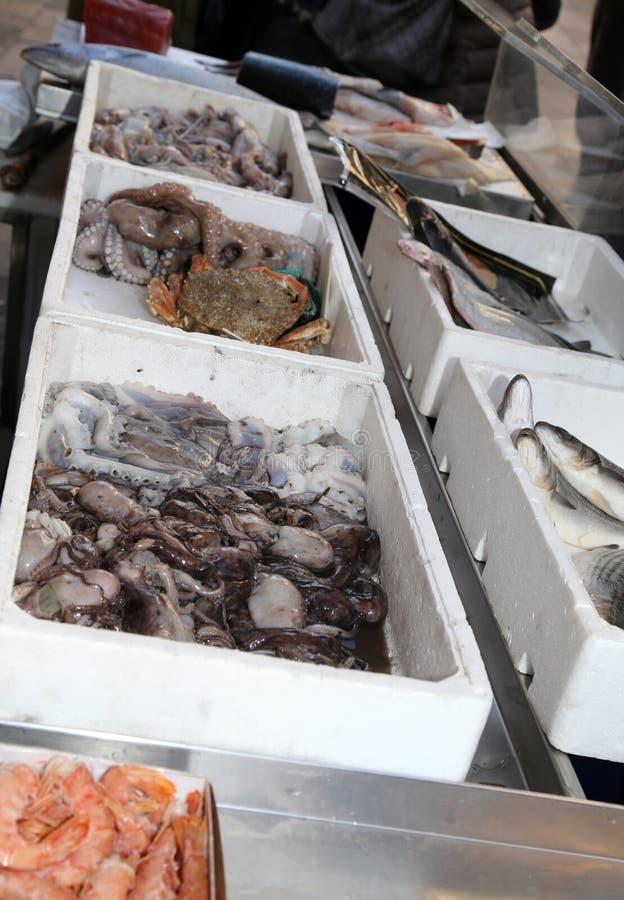 鱼贩子长凳有鱼和软体动物的待售 库存照片