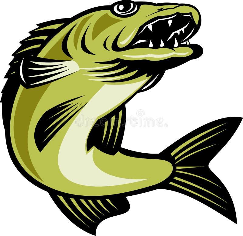 鱼跳的角膜白斑 向量例证