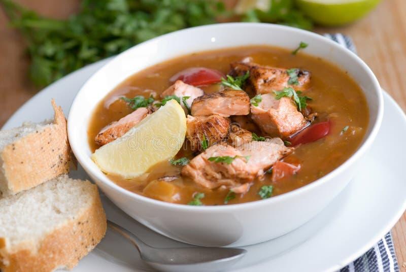 鱼辣炖煮的食物 免版税库存照片