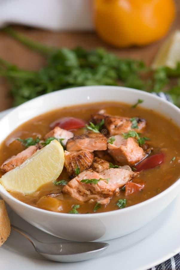 鱼辣炖煮的食物 免版税库存图片
