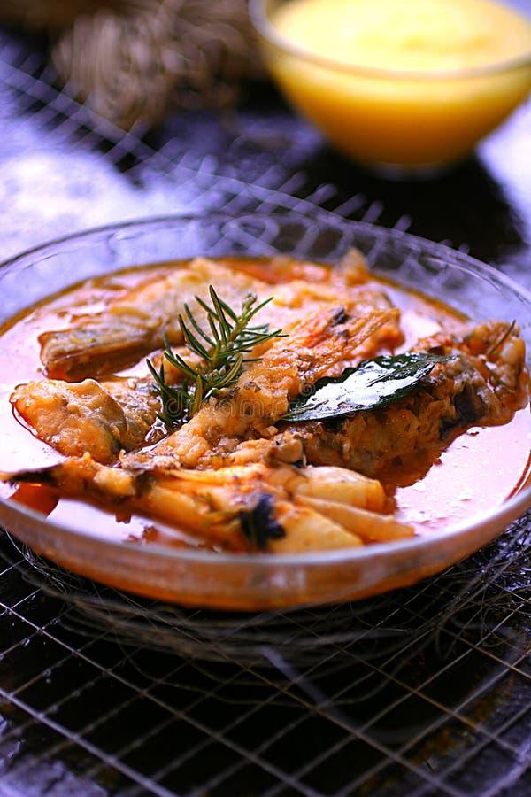 鱼辣炖煮的食物 图库摄影
