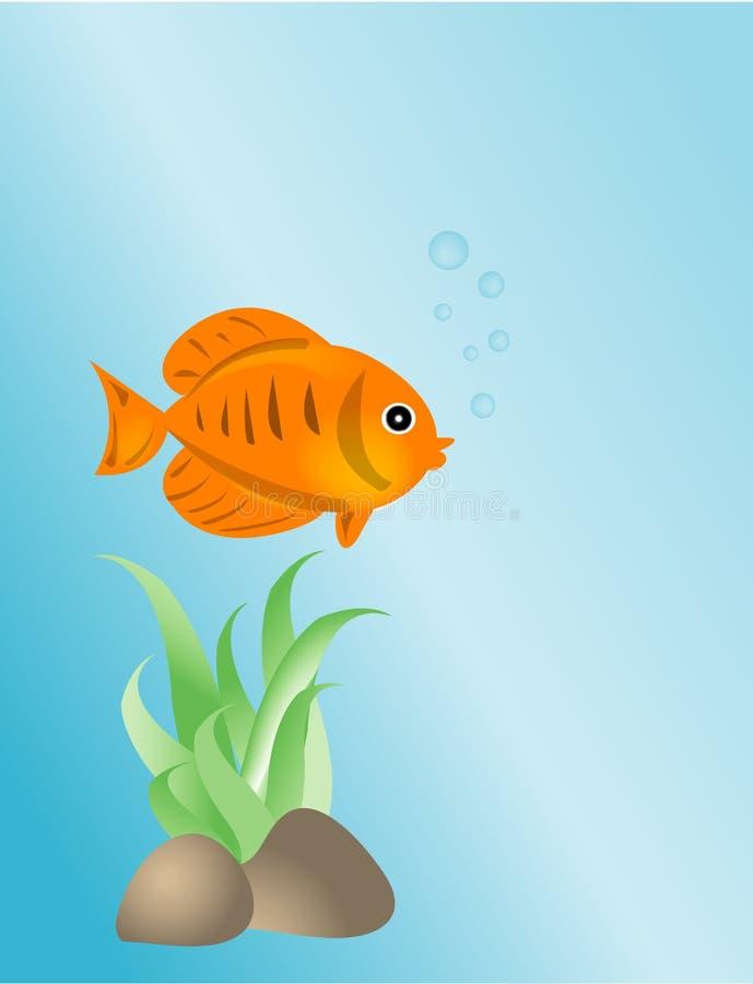 鱼金例证 库存例证