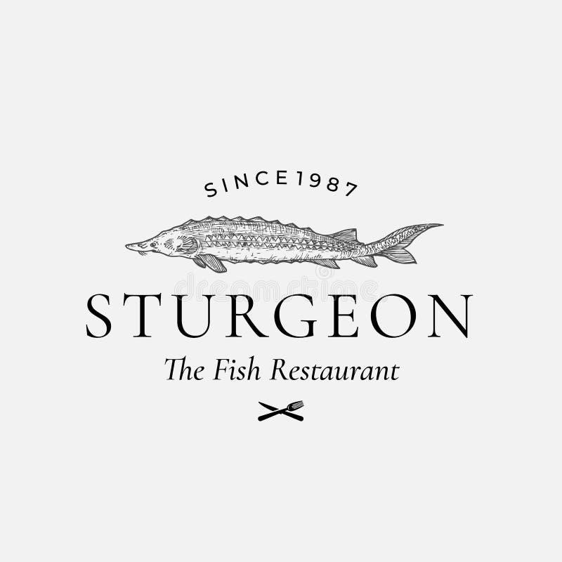 鱼餐馆摘要传染媒介标志、标志或者商标模板 与优等减速火箭的手拉的鲟鱼或白海豚鱼 皇族释放例证