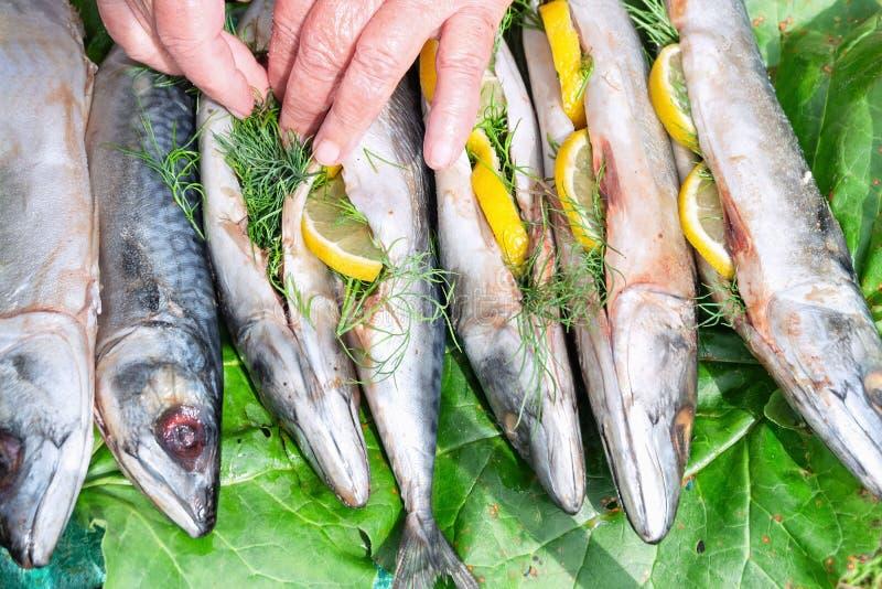 鱼鲭鱼充满柠檬和莳萝烹调的户外 免版税库存照片