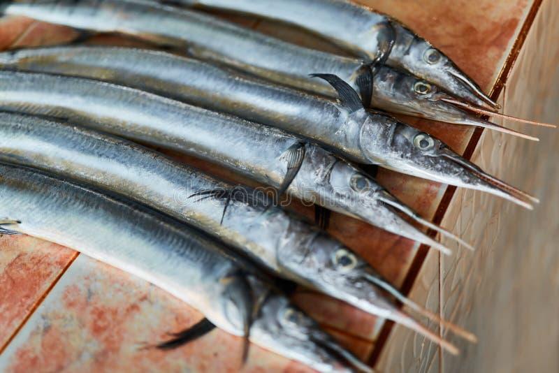 鱼,海鲜 颌针鱼(Houndfish, Tylosurus Crocodilus)在 免版税图库摄影