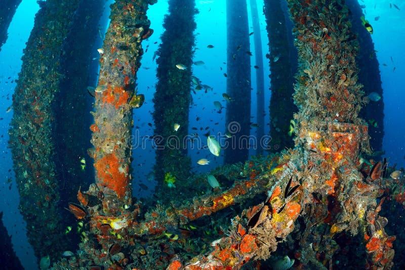鱼水下的近的抽油装置 免版税库存照片