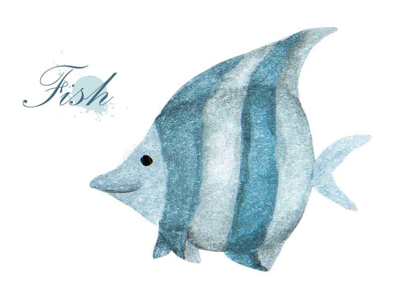 鱼水彩绘画在白色背景的 向量例证