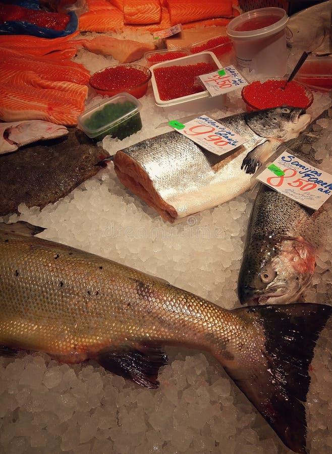 鱼&鱼子酱 图库摄影