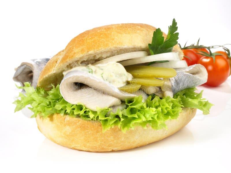 鱼-鲱鱼小圆面包 库存照片