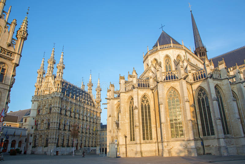 鲁汶-哥特式城镇厅和圣彼得大教堂 免版税库存图片